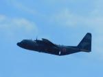 京成本線沿線民(KS3035F)さんが、習志野演習場で撮影した航空自衛隊 C-130H Herculesの航空フォト(飛行機 写真・画像)