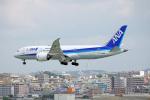 ちゃぽんさんが、那覇空港で撮影した全日空 787-8 Dreamlinerの航空フォト(飛行機 写真・画像)