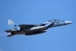 Kanarinaさんが、新田原基地で撮影した航空自衛隊 F-15DJ Eagleの航空フォト(飛行機 写真・画像)