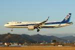 デデゴンさんが、高知空港で撮影した全日空 A321-272Nの航空フォト(飛行機 写真・画像)
