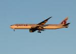 銀苺さんが、成田国際空港で撮影したカタール航空 777-3DZ/ERの航空フォト(飛行機 写真・画像)
