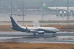 はやたいさんが、羽田空港で撮影したボーイング・ビジネス・ジェット 737-77Z BBJの航空フォト(飛行機 写真・画像)