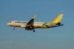 accheyさんが、福岡空港で撮影したセブパシフィック航空 A320-214の航空フォト(飛行機 写真・画像)