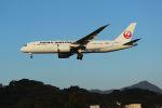 accheyさんが、福岡空港で撮影した日本航空 787-8 Dreamlinerの航空フォト(飛行機 写真・画像)
