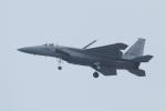 マー君さんが、名古屋飛行場で撮影した航空自衛隊 F-15J Eagleの航空フォト(飛行機 写真・画像)