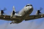とらとらさんが、厚木飛行場で撮影した海上自衛隊 P-3Cの航空フォト(飛行機 写真・画像)