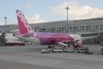 uhfxさんが、那覇空港で撮影したピーチ A320-214の航空フォト(飛行機 写真・画像)