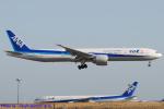 Chofu Spotter Ariaさんが、羽田空港で撮影した全日空 777-381/ERの航空フォト(飛行機 写真・画像)