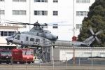 Hii82さんが、八尾空港で撮影したアメリカ海兵隊 UH-1Yの航空フォト(飛行機 写真・画像)