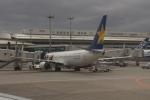 uhfxさんが、那覇空港で撮影したスカイマーク 737-8FZの航空フォト(飛行機 写真・画像)