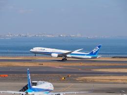 hirohirokinさんが、羽田空港で撮影した全日空 787-9の航空フォト(飛行機 写真・画像)