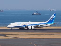 hirohirokinさんが、羽田空港で撮影した全日空 787-8 Dreamlinerの航空フォト(飛行機 写真・画像)
