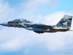 MASACHANさんが、新田原基地で撮影した航空自衛隊 F-15DJ Eagleの航空フォト(飛行機 写真・画像)