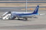 ぼのさんが、羽田空港で撮影した全日空 A320-211の航空フォト(飛行機 写真・画像)