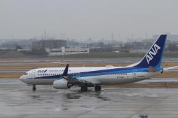 TAK_HND_NRTさんが、伊丹空港で撮影した全日空 737-881の航空フォト(飛行機 写真・画像)