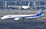 鉄バスさんが、羽田空港で撮影した全日空 787-8 Dreamlinerの航空フォト(飛行機 写真・画像)