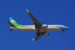 KAZKAZさんが、キング・アブドゥルアジズ国際空港で撮影したサウジアラムコ 737-8ALの航空フォト(飛行機 写真・画像)