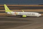 uhfxさんが、羽田空港で撮影したソラシド エア 737-81Dの航空フォト(飛行機 写真・画像)