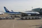 uhfxさんが、羽田空港で撮影した全日空 777-381の航空フォト(飛行機 写真・画像)