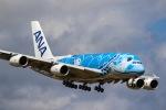 Yusuke Iwataさんが、成田国際空港で撮影した全日空 A380-841の航空フォト(飛行機 写真・画像)