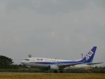 ノリださんが、宮古空港で撮影した全日空 737-781の航空フォト(飛行機 写真・画像)