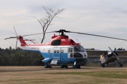 成田国際空港 - Narita International Airport [NRT/RJAA]で撮影された東京消防庁航空隊 - Tokyo Fire Departmentの航空機写真