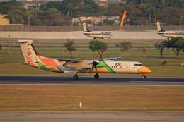 tsubameさんが、ドンムアン空港で撮影したノックエア DHC-8-402Q Dash 8の航空フォト(飛行機 写真・画像)