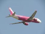 commet7575さんが、福岡空港で撮影したピーチ A320-214の航空フォト(飛行機 写真・画像)