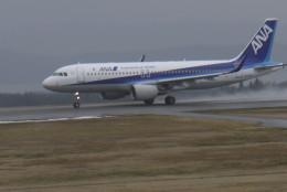 Mitsuki1211さんが、能登空港で撮影した全日空 A320-214の航空フォト(飛行機 写真・画像)