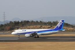TAK_HND_NRTさんが、高松空港で撮影した全日空 A320-211の航空フォト(飛行機 写真・画像)