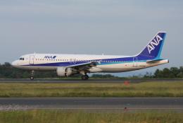 TAK_HND_NRTさんが、岡山空港で撮影した全日空 A320-211の航空フォト(飛行機 写真・画像)