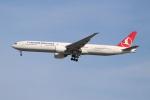 OMAさんが、シンガポール・チャンギ国際空港で撮影したターキッシュ・エアラインズ 777-3F2/ERの航空フォト(飛行機 写真・画像)