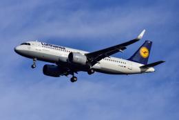 航空フォト:D-AINF ルフトハンザドイツ航空 A320neo