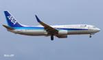 RINA-281さんが、小松空港で撮影した全日空 737-881の航空フォト(飛行機 写真・画像)