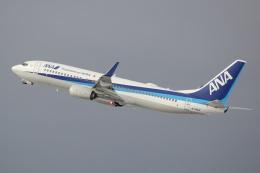 yuu@HKD/RJCHさんが、新千歳空港で撮影した全日空 737-881の航空フォト(飛行機 写真・画像)