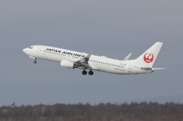 yuu@HKD/RJCHさんが、新千歳空港で撮影した日本航空 737-846の航空フォト(飛行機 写真・画像)