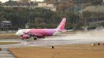 aki241012さんが、福岡空港で撮影したピーチ A320-214の航空フォト(飛行機 写真・画像)