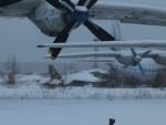 Smyth Newmanさんが、モニノ空軍博物館で撮影したソビエト空軍 Su-25の航空フォト(飛行機 写真・画像)