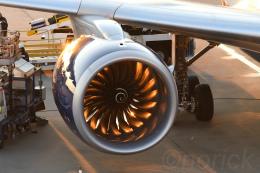 norickさんが、成田国際空港で撮影したデルタ航空 A330-941の航空フォト(飛行機 写真・画像)