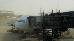 westtowerさんが、羽田空港で撮影した日本航空 777-246/ERの航空フォト(飛行機 写真・画像)