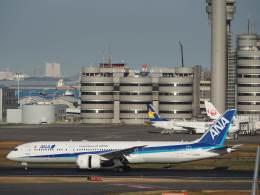 たにしさんが、羽田空港で撮影した全日空 787-9の航空フォト(飛行機 写真・画像)