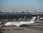 たにしさんが、羽田空港で撮影した日本航空 787-8 Dreamlinerの航空フォト(飛行機 写真・画像)