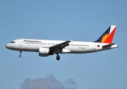 雲霧さんが、成田国際空港で撮影したフィリピン航空 A320-214の航空フォト(飛行機 写真・画像)