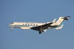 Hiro-hiroさんが、羽田空港で撮影した海上保安庁 G-V Gulfstream Vの航空フォト(飛行機 写真・画像)