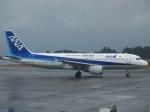 FT51ANさんが、鹿児島空港で撮影した全日空 A320-211の航空フォト(飛行機 写真・画像)