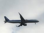 sennsaibasiさんが、伊丹空港で撮影した全日空 A321-272Nの航空フォト(飛行機 写真・画像)