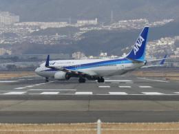 うすさんが、伊丹空港で撮影した全日空 737-881の航空フォト(飛行機 写真・画像)