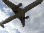 うすさんが、伊丹空港で撮影した全日空 A321-211の航空フォト(飛行機 写真・画像)
