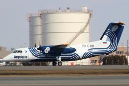 セブンさんが、新千歳空港で撮影したオーロラ DHC-8-201Q Dash 8の航空フォト(飛行機 写真・画像)