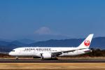 pcmediaさんが、静岡空港で撮影した日本航空 787-8 Dreamlinerの航空フォト(飛行機 写真・画像)